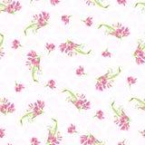 Modelo con las pequeñas flores rosadas Foto de archivo
