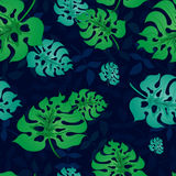 Modelo con Leaves3-01 tropical Fotos de archivo