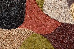 Modelo con los cereales del color. Foto de archivo