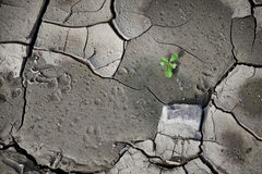 Modelo creado de una tierra agrietada de la foto Tiempo seco, sequía fotos de archivo