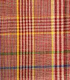 Modelo a cuadros y de la raya de la bufanda Fotografía de archivo libre de regalías