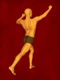 Modelo da acupuntura, modelo 3D Imagem de Stock