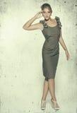 Modelo da beleza Fotografia de Stock