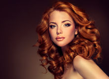 Modelo da menina com cabelo vermelho encaracolado longo Foto de Stock