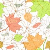 Modelo de Autumn Fallen Leaves Hand Drawn Foto de archivo libre de regalías