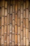 Modelo de bambú de la pared Fotos de archivo