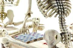Modelo de esqueleto dos verificadores no fundo branco Fotografia de Stock