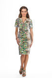 Modelo de fôrma bonito da mulher de negócio isolado no branco, verde Imagem de Stock