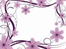 Modelo de flor Imágenes de archivo libres de regalías