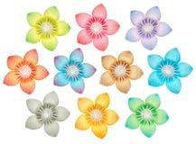 Modelo de flor fotos de archivo libres de regalías