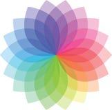 Modelo de flor coloreado Foto de archivo libre de regalías