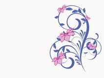 Modelo de flor decorativo Fotografía de archivo