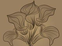 Modelo de flor decorativo Foto de archivo libre de regalías