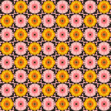 Modelo de flor inconsútil Imágenes de archivo libres de regalías