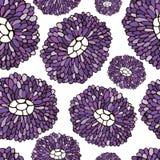 Modelo de flor inconsútil Textura botánica con los asteres Imagen de archivo