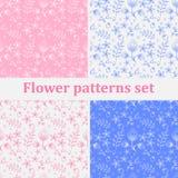 Modelo de flores Imagen de archivo libre de regalías