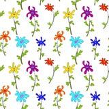 Modelo de flores brillante plano simple Fotografía de archivo libre de regalías
