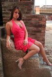 Modelo de forma na cor-de-rosa Fotos de Stock