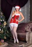Modelo de forma nas meias que levantam no estúdio Fotos de Stock Royalty Free