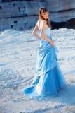 Modelo de forma no vestido de noite Fotografia de Stock Royalty Free