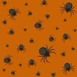 Modelo de Halloween con las arañas Imágenes de archivo libres de regalías