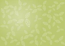 Modelo de hojas en fondo verde. Arte del vector Foto de archivo libre de regalías