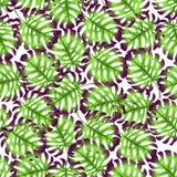 Modelo de hojas de palma libre illustration