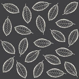 Modelo de hojas secas Fotos de archivo libres de regalías