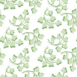 Modelo de hojas verdes Imagen de archivo libre de regalías