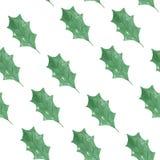 Modelo de Holly Holidays Christmas Green Seamless de la acuarela stock de ilustración
