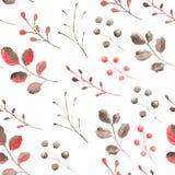 Modelo de la acuarela con las hojas y las ramas coralinas ilustración del vector