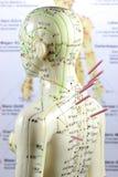 Modelo 05 de la acupuntura Foto de archivo