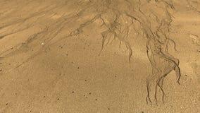 Modelo de la arena Foto de archivo