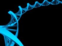 Modelo de la DNA Foto de archivo