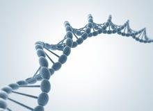 Modelo de la DNA Fotos de archivo