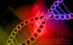 Modelo de la DNA en color rojo Fotografía de archivo libre de regalías