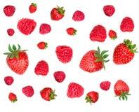 Modelo de la fresa y de la frambuesa Diversas bayas frescas aisladas Fotos de archivo