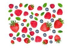 Modelo de la fresa y de la frambuesa Diversas bayas frescas aisladas Fotografía de archivo