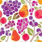 Modelo de la fruta Foto de archivo libre de regalías