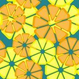 Modelo de la fruta cítrica del limón Modelo de las frutas Modelo inconsútil dibujado mano del vector Foto de archivo libre de regalías