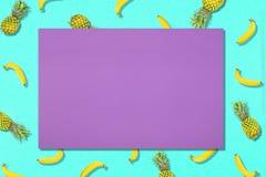 Modelo de la fruta fresca del dulce de verano para la endecha del plano del concepto del día de fiesta Imagen de archivo libre de regalías