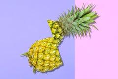 Modelo de la fruta fresca del dulce de verano para la endecha del plano del concepto del día de fiesta Imágenes de archivo libres de regalías