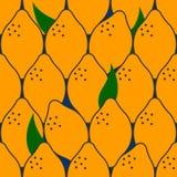 modelo de la fruta tropical Ilustración del Vector