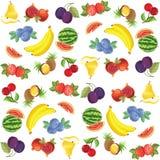 Modelo de la fruta y de la baya Fotografía de archivo