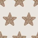 Modelo de la galleta de la estrella de la Navidad Imágenes de archivo libres de regalías