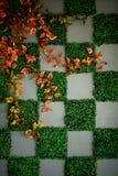 Modelo de la hierba Imágenes de archivo libres de regalías