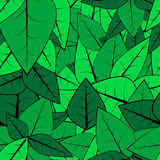 Modelo de la hoja inconsútil ilustración del vector