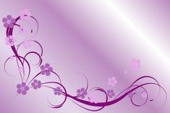 Modelo de la lila Imagen de archivo