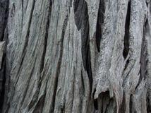 Modelo de la madera Fotografía de archivo