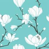 Modelo de la magnolia ilustración del vector
